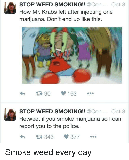 smoke weed every day: STOP WEED SMOKING!! @Con.Oct 8  How Mr. Krabs felt after injecting one  marijuana. Don't end up like this.  STOP WEED SMOKING!! @Con.Oct 8  Retweet if you smoke marijuana so l can  report you to the police.  4 343 377 <p>Smoke weed every day</p>
