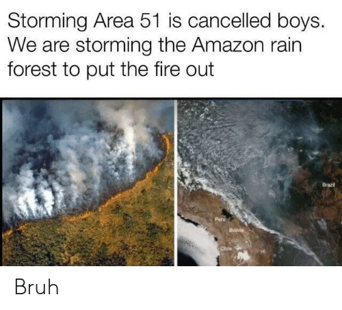 Chile: Storming Area 51 is cancelled boys.  We are storming the Amazon rain  forest to put the fire out  Brazi  Bolvia  Chile Bruh