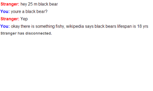 Wikipedia, Bear, and Bears: Stranger: hey 25 m black bear  ou: youre a black bear?  Stranger: Yep  You: okay there is something fishy, wikipedia says black bears lifespan is 18 yrs  Stranger has disconnected.