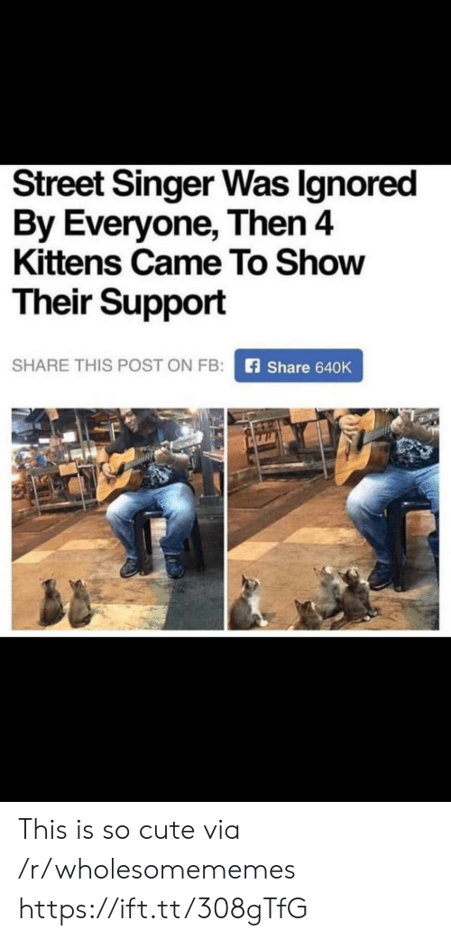 Cute, Kittens, and Via: Street Singer Was Ignored  By Everyone, Then 4  Kittens Came To Show  Their Support  SHARE THIS POST ON FB:  Share 640K This is so cute via /r/wholesomememes https://ift.tt/308gTfG