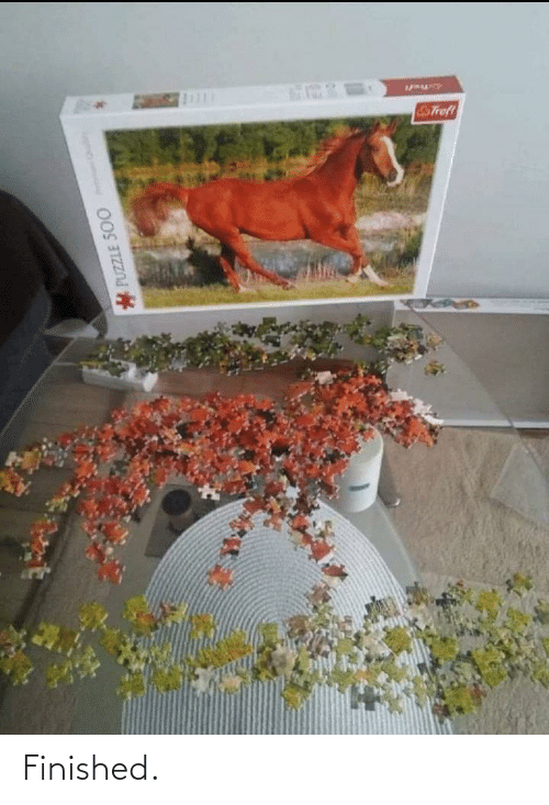 puzzle: STrofl  PUZZLE 500 Finished.