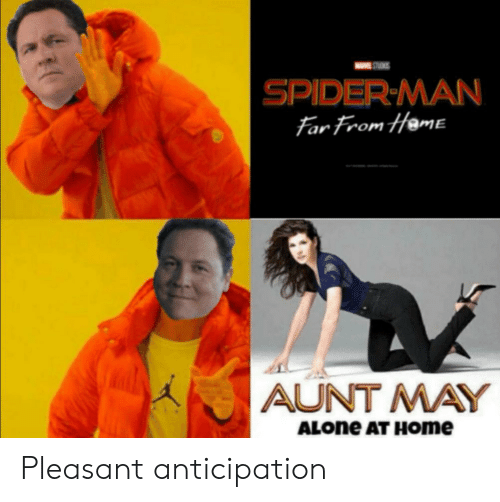 Being Alone, Spider, and SpiderMan: STS  SPIDER MAN  Far From Heme  AUNT MAY  ALONE AT HOme Pleasant anticipation
