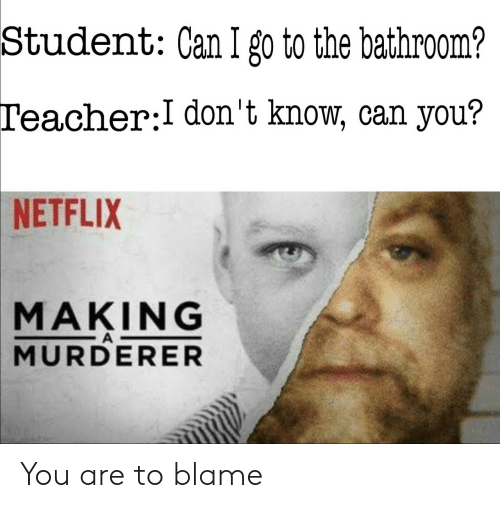 Making a Murderer, Netflix, and Teacher: Student: Can I go to the bathroom?  Teacher:I don't know, can you?  NETFLIX  MAKING  A  MURDERER You are to blame