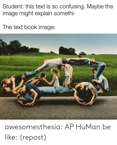 repost: Student: this text is so confusing. Maybe the  image might explain somethi-  The text book image: awesomesthesia:  AP HuMan be like: (repost)