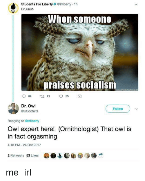 orgasming: Students For Liberty @sfliberty 1h  Bruuuuh  When someone  praises socialism  Dr. Owl  @USdotard  Follow  Replying to @sflberty  Owl expert here! (Ornithologist) That owl is  in fact orgasming  4:18 PM -24 Oct 2017  2 Retweets 53 Lkes me_irl