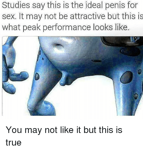 Memes, Sex, and True: Studies say this is the ideal penis for  sex. It may not be attractive but this is  what peak performance looks like You may not like it but this is true