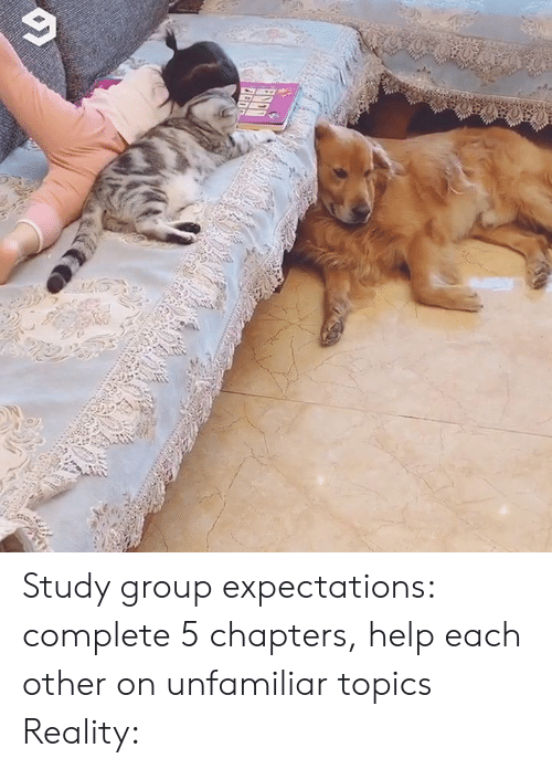 Dank, Help, and Reality: Study group expectations: complete 5 chapters, help each other on unfamiliar topics Reality: