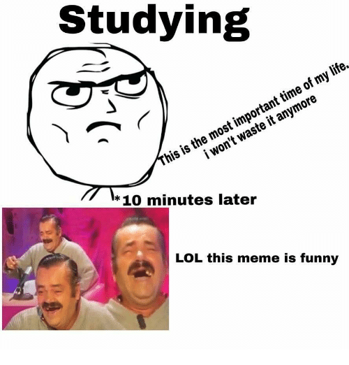 Time Of My Life: Studying  his is the most important time of my life.  i won't waste it anymore  * 10 minutes later  LOL this meme is funny