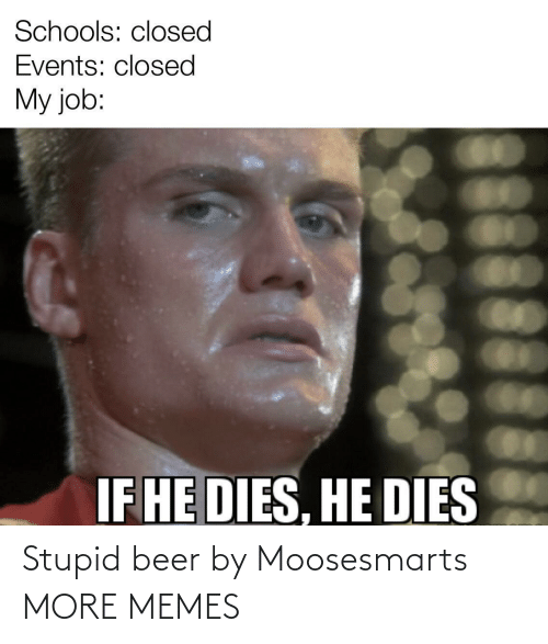 Beer: Stupid beer by Moosesmarts MORE MEMES