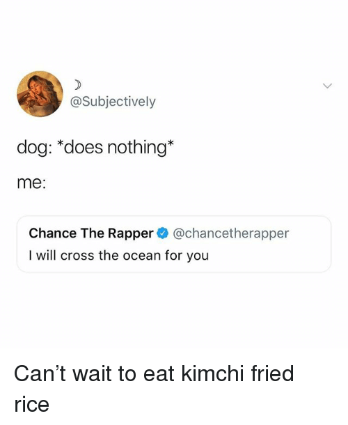 Chance the Rapper, Memes, and Cross: @Subjectively  dog: *does nothing*  me:  Chance The Rapper@chancetherapper  I will cross the ocean for you Can't wait to eat kimchi fried rice
