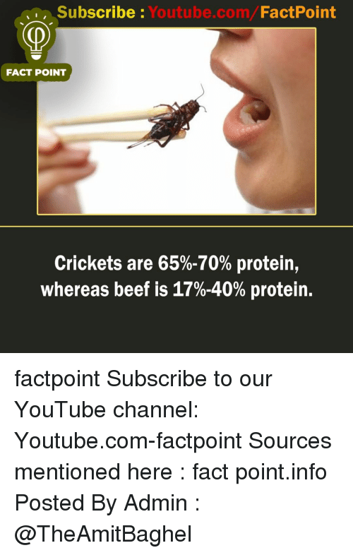 Beef, Memes, and Protein: Subscribe Youtube.com/FactPoint  FACT POINT  Crickets are 65%-70% protein,  whereas beef is 17%-40% protein. factpoint Subscribe to our YouTube channel: Youtube.com-factpoint Sources mentioned here : fact point.info Posted By Admin : @TheAmitBaghel