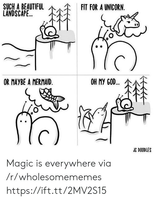 A Unicorn: SUCH A BEAUTIFUL  LANDSCAPE..  FIT FOR A UNICORN.  OR MAYBE A MERMAID.  OH MY GOD..  JC DOODLES Magic is everywhere via /r/wholesomememes https://ift.tt/2MV2S15