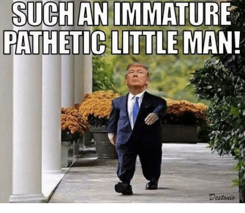 Man, Immature, and Such: SUCH AN IMMATURE  PATH  ETIC LUTTLE MAN!  Destonio