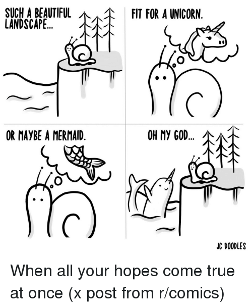 A Unicorn: SUCHA BEAUTIFUL  LANDSCAPE..,  FIT FOR A UNICORN  \  OR MAYBE A MERMAID  OH My GOD  JC DOODLES When all your hopes come true at once (x post from r/comics)