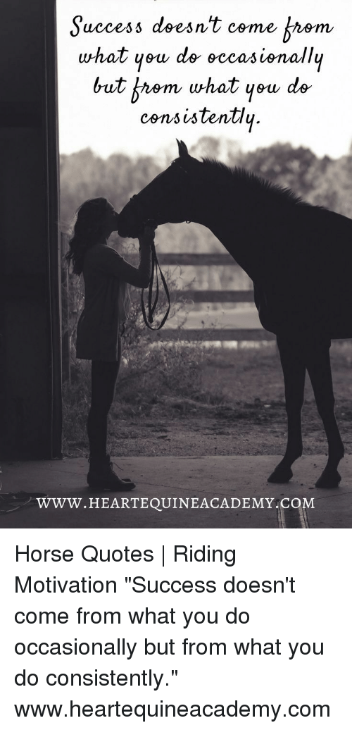 "Horse, Quotes, and Success: Suecess doesn't come Arem  what yeu de eccasisnallu  uccesi dses  but b九em what yew de  consistentlų  WWW.HEARTEQUINEACADEMY C  OM Horse Quotes | Riding Motivation  ""Success doesn't come from what you do occasionally but from what you do consistently."" www.heartequineacademy.com"