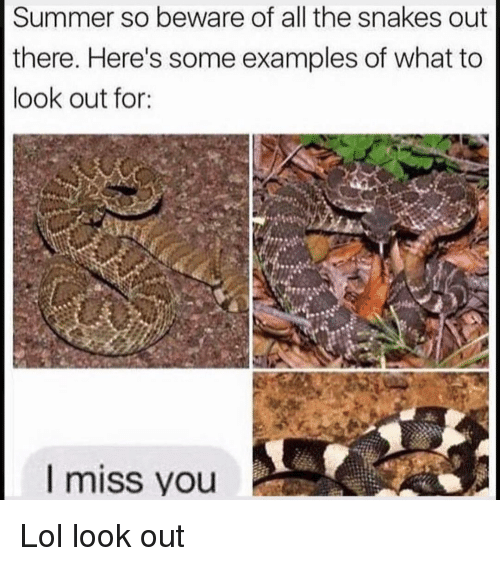 Funny, Lol, and Summer: Summer so beware of all the snakes out  there. Here's some examples of what to  look out for:  l miss you Lol look out