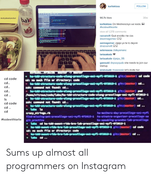 Sums: Sums up almost all programmers on Instagram