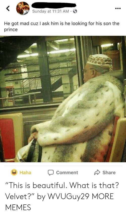 """Beautiful, Dank, and Memes: Sunday at 11:31 AM  He got mad cuz I ask him is he looking for his son the  prince  Haha Comment  Share """"This is beautiful. What is that? Velvet?"""" by WVUGuy29 MORE MEMES"""