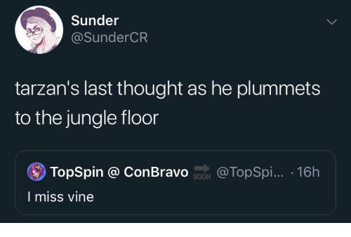 Vine: Sunder  @SunderCR  tarzan's last thought as he plummets  to the jungle floor  TopSpin @ ConBravo ON  @TopSpi... 16h  I miss vine