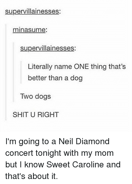 Dogs, Memes, and Shit: supervillainesses:  minasume:  supervillainesses:  Literally name ONE thing that's  better than a dog  Two dogs  SHIT U RIGHT I'm going to a Neil Diamond concert tonight with my mom but I know Sweet Caroline and that's about it.