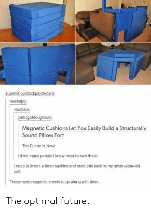 time machine: superwhopotlockpsychotard  leeshajoy:  mschaos:  joebagofdoughnuts  Magnetic Cushions Let You Easily Build a Structurally  Sound Pillow Fort  The Future is Now!  I think many people I know need to own these  I need to invent a time machine and send this back to my seven-year-old  self.  These need magentic sheets to go along with them. The optimal future.