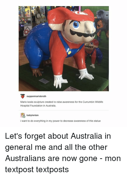 Generalization: suppermariobroth  Mario koala sculpture created to raise awareness for the Currumbin Wildlife  Hospital Foundation in Australia.  babylonian  i want to do everything in my power to decrease awareness of this statue Let's forget about Australia in general me and all the other Australians are now gone - mon textpost textposts