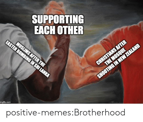 Memes, Target, and Tumblr: SUPPORTING  EACH OTHER  imgflip.com positive-memes:Brotherhood
