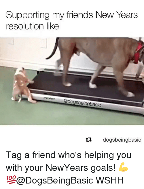 Newyears: Supporting my friends New Years  resolution like  dogsbeingbasic  ti.  dogsbeingbasic Tag a friend who's helping you with your NewYears goals! 💪💯@DogsBeingBasic WSHH