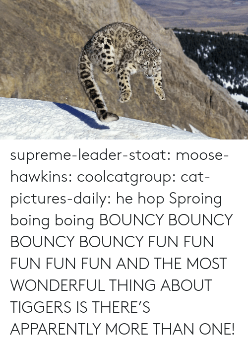 bouncy: supreme-leader-stoat: moose-hawkins:  coolcatgroup:  cat-pictures-daily: he hop  Sproing boing boing    BOUNCY BOUNCY BOUNCY BOUNCY FUN FUN FUN FUN FUN  AND THE MOST WONDERFUL THING ABOUT TIGGERS IS THERE'S APPARENTLY MORE THAN ONE!