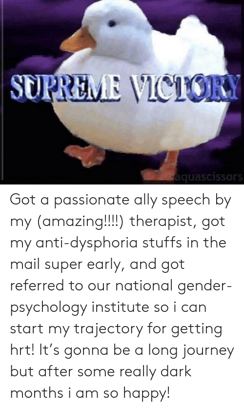 Journey, Supreme, and Ally: SUPREME VICTORY  Gaquascissors Got a passionate ally speech by my (amazing!!!!) therapist, got my anti-dysphoria stuffs in the mail super early, and got referred to our national gender-psychology institute so i can start my trajectory for getting hrt! It's gonna be a long journey but after some really dark months i am so happy!