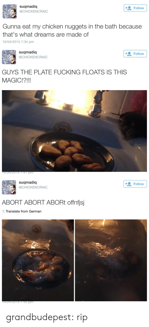 Fucking, Target, and Tumblr: suqmadiq  @CHICKENCRAIC  Follow  Gunna eat my chicken nuggets in the bath because  that's what dreams are made of  0/04/2015 7:34 pm   suqmadiq  CHICKENCRAIC  +. Follow  GUYS THE PLATE FUCKING FLOATS IS THIS  MAGIC!?!!!   suqmadioq  CHICKENCRAIC  Follow  ABORT ABORT ABORt offnfjsj  Translate from German grandbudepest:  rip