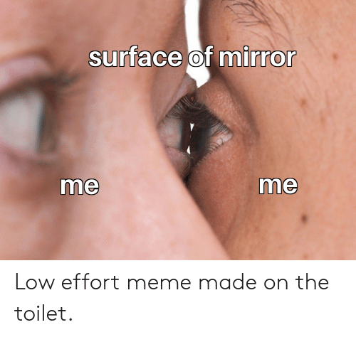 Meme, Reddit, and Mirror: surface of mirror  me  me Low effort meme made on the toilet.
