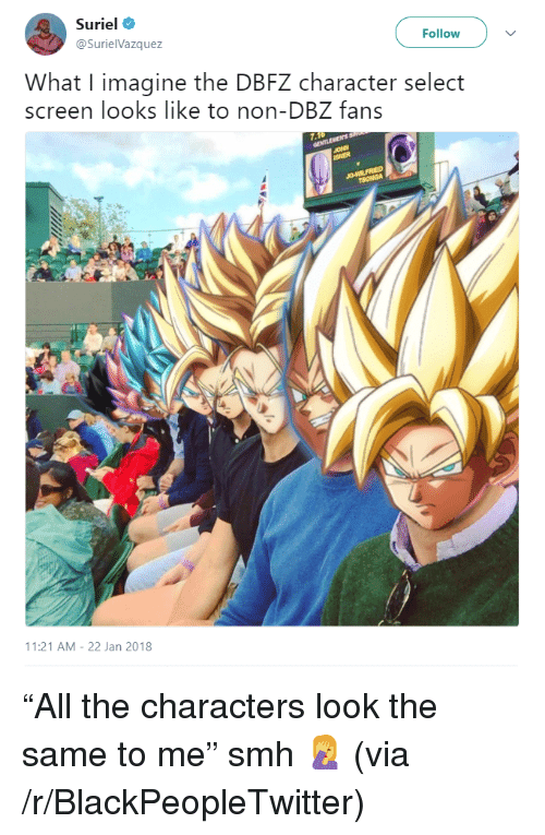 dbz: Suriel  @SurielVazquez  Follow  What I imagine the DBFZ character select  screen looks like to non-DBZ fans  11:21 AM-22 Jan 2018 <p>&ldquo;All the characters look the same to me&rdquo; smh 🤦 (via /r/BlackPeopleTwitter)</p>