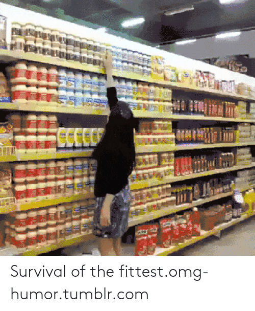 Fittest: Survival of the fittest.omg-humor.tumblr.com