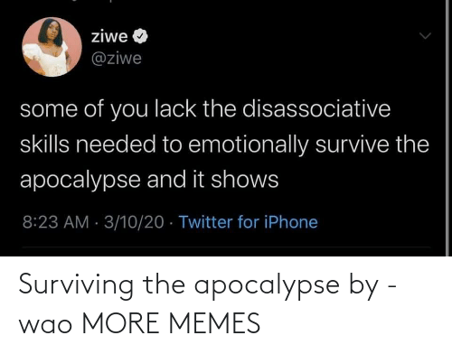 apocalypse: Surviving the apocalypse by -wao MORE MEMES