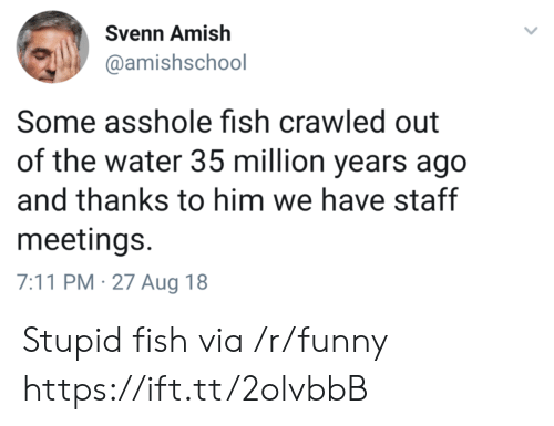 amish: Svenn Amish  @amishschool  Some asshole fish crawled out  of the water 35 million years ago  and thanks to him we have staff  meetings.  7:11 PM-27 Aug 18 Stupid fish via /r/funny https://ift.tt/2olvbbB