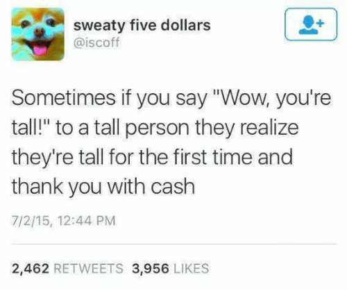 "sweaty: sweaty five dollars  @iscoff  Sometimes if you say ""Wow, you're  tall!"" to a tall person they realize  they're tall for the first time and  thank you with cash  7/2/15, 12:44 PM  2,462 RETWEETS 3,956 LIKES"