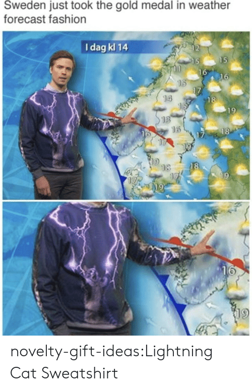 Fashion, Tumblr, and Blog: Sweden just took the gold medal in weather  forecast fashion  I dag kl 14  2  15  16  16  14  18  19  13  16  18  16  17  18  18  19  19  19 novelty-gift-ideas:Lightning Cat Sweatshirt