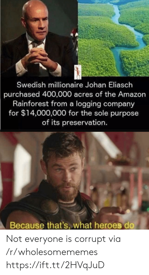 Amazon, Heroes, and Swedish: Swedish millionaire Johan Eliasch  purchased 400,000 acres of the Amazon  Rainforest from a logging company  for $14,000,000 for the sole purpose  of its preservation.  Because that's, what heroes do Not everyone is corrupt via /r/wholesomememes https://ift.tt/2HVqJuD