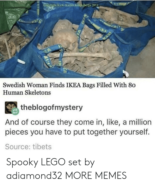 Dank, Ikea, and Lego: Swedish Woman Finds IKEA Bags Filled With 80  Human Skeletons  theblogofmystery  And of course they come in, like, a million  pieces you have to put together yourself.  Source: tibets Spooky LEGO set by adiamond32 MORE MEMES