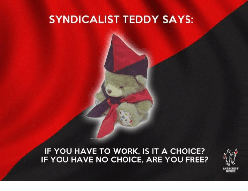 Anarchist Memes: SYNDICALIST TEDDY SAYS:  IF YOU HAVE TO WORK, IS IT A CHOICE?  IF YOU HAVE NO CHOICE, ARE YOU FREE?  ANARCHIST  MEMES