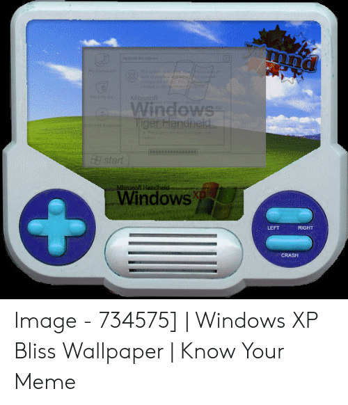 Windows Xp Meme: Systes Std  eComputoe  This s4he hde ease se  k in grs ees y  wod S  tsted hetr o  te c  Microsoft  Windows  Tiger Handheld  ret explore  0 neen  H start  Microsoft Handheld  Windows  LEFT  RIGHT  CRASH Image - 734575] | Windows XP Bliss Wallpaper | Know Your Meme