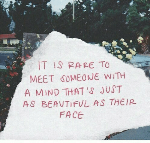 meet someone: T IS RARE TO  MEET SOMEONE WiTH  A MIND THAT 'S JUST  AS BEAVTIFUL AS THEIR  FACE