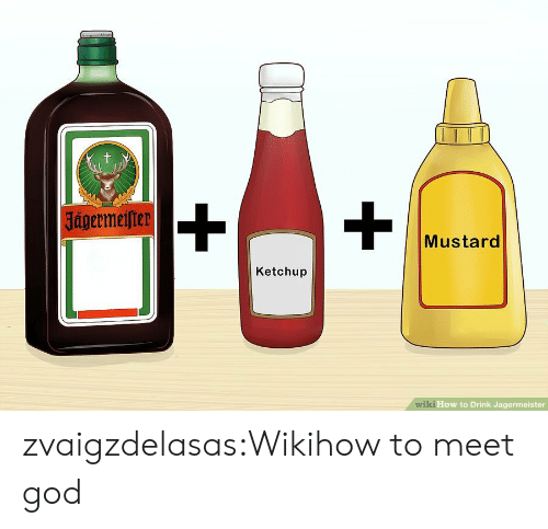 wiki how: t  |Jagermeifter  Mustard  Ketchup  wiki How to Drink Jagermeister zvaigzdelasas:Wikihow to meet god