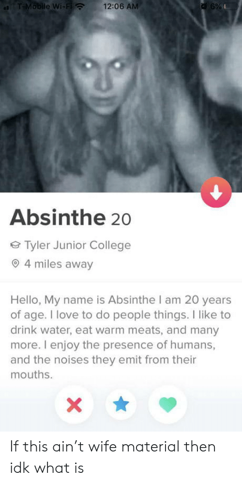 20 Years: T-Mobile Wi-Fi  12:06 AM  a 6%  Absinthe 20  Tyler Junior College  4 miles away  Hello, My name is Absinthe I am 20 years  of age. I love to do people things. I like to  drink water, eat warm meats, and many  more. I enjoy the presence of humans,  and the noises they emit from their  mouths. If this ain't wife material then idk what is