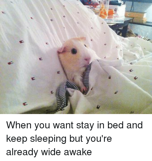 Keep Sleeping: t  n When you want stay in bed and keep sleeping but you're already wide awake