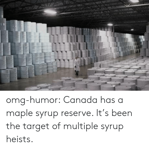 Omg, Target, and Tumblr: T omg-humor:  Canada has a maple syrup reserve. It's been the target of multiple syrup heists.