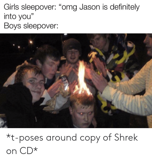 Shrek: *t-poses around copy of Shrek on CD*