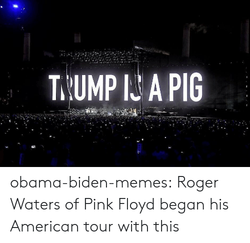 Pink Floyd: T.UMP I A PIG obama-biden-memes: Roger Waters of Pink Floyd began his American tour with this
