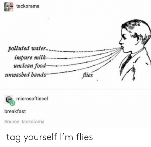 tag yourself: tackorama  polluted water.  impure milk  unclean food  flies  unwasbed bands  microsoftincel  breakfast  Source: tackorama tag yourself I'm flies